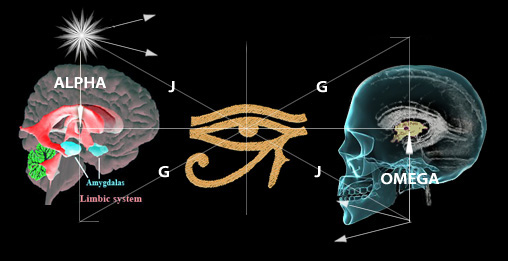 Secrets of the Pyramid Hippocampus brain