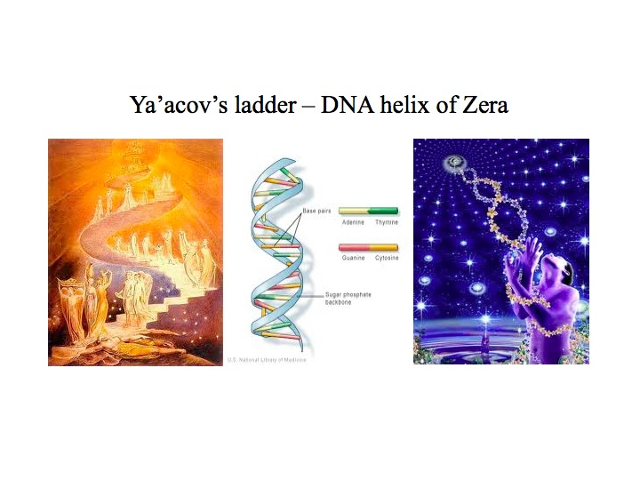 DNA Jacobs ladder 2