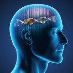 Thinking with DNA and Gnosis