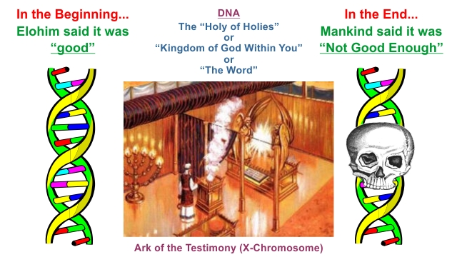 DNA Ark of the covenant