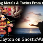 Members – How to Remove Metals and Toxins from Your Body On GW Radio