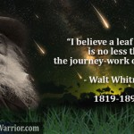 I believe a leaf of grass is no less than the journey-work of the stars