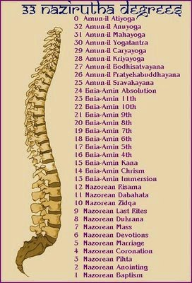 Spinal cord 4