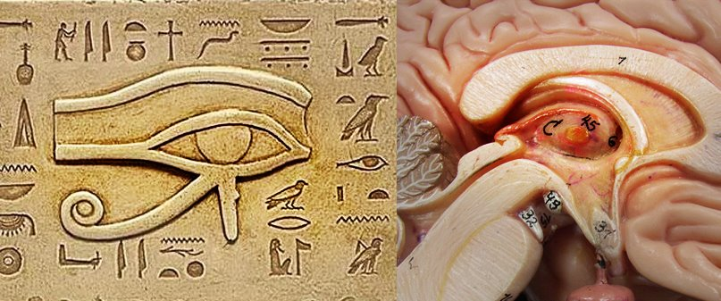 open your third eye to walk like an ancient egyptian