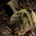 Lost Ancient City of the Monkey God Discovered in the Honduran Rain Forest