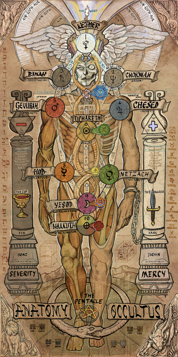 Diep Io Tanks Classes Updates Levels besides Bacia do rio amazonas additionally Decay 20Chains besides Stock Illustration Heart Structure Organ Circulatory System Image75972576 in addition Digestion. on schema path