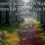 In every walk with nature, one receives far more than he seeks