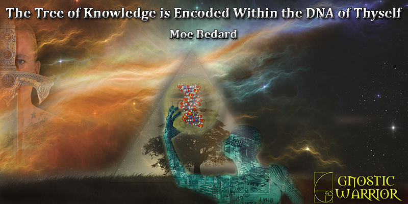 The Tree Of Knowledge Is Encoded Within The DNA Of Thyself