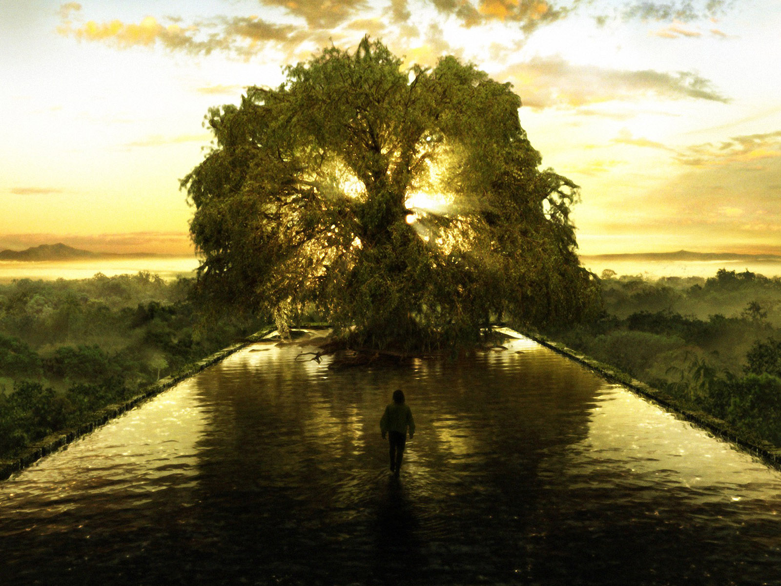 The Tree Of Life Represents The Spiritual Point Of Balance The