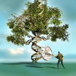 Our genealogy is that Tree and cosmic center that keeps us connected and balanced