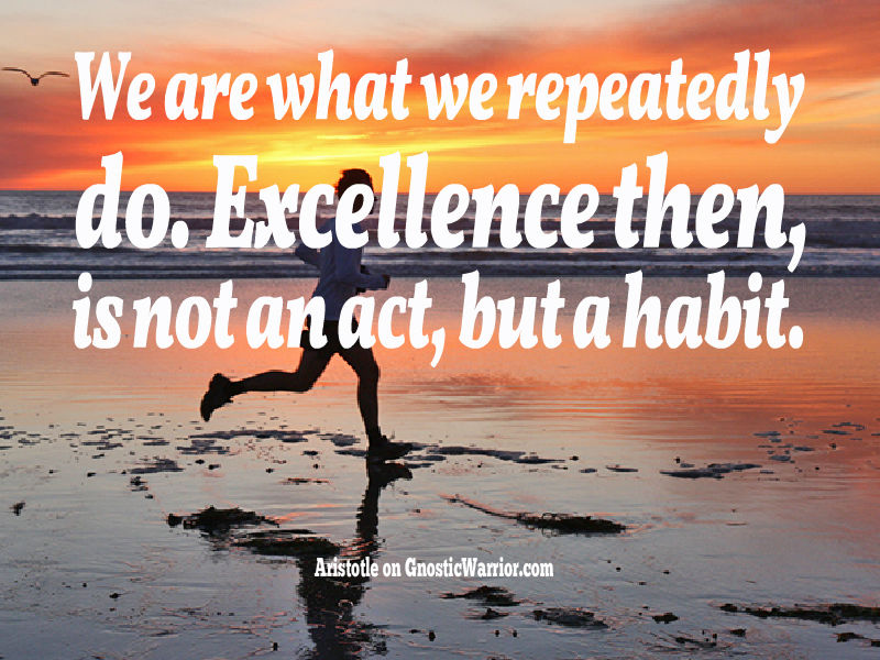 aristotle we are what we repeatedly do