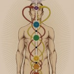 The serpent is a Gnostic symbol for the spinal cord