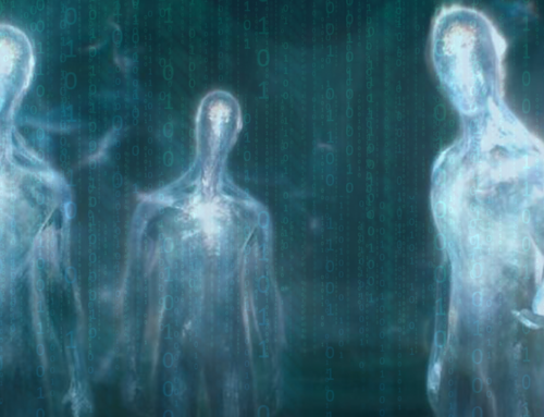 Humans Have Become a Parasitic Appendage Enveloped in the Web of the Computer Matrix