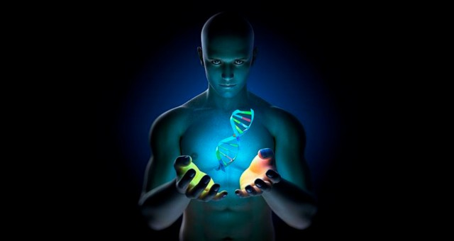 The Stone has the seed of all DNA in an archetypal form