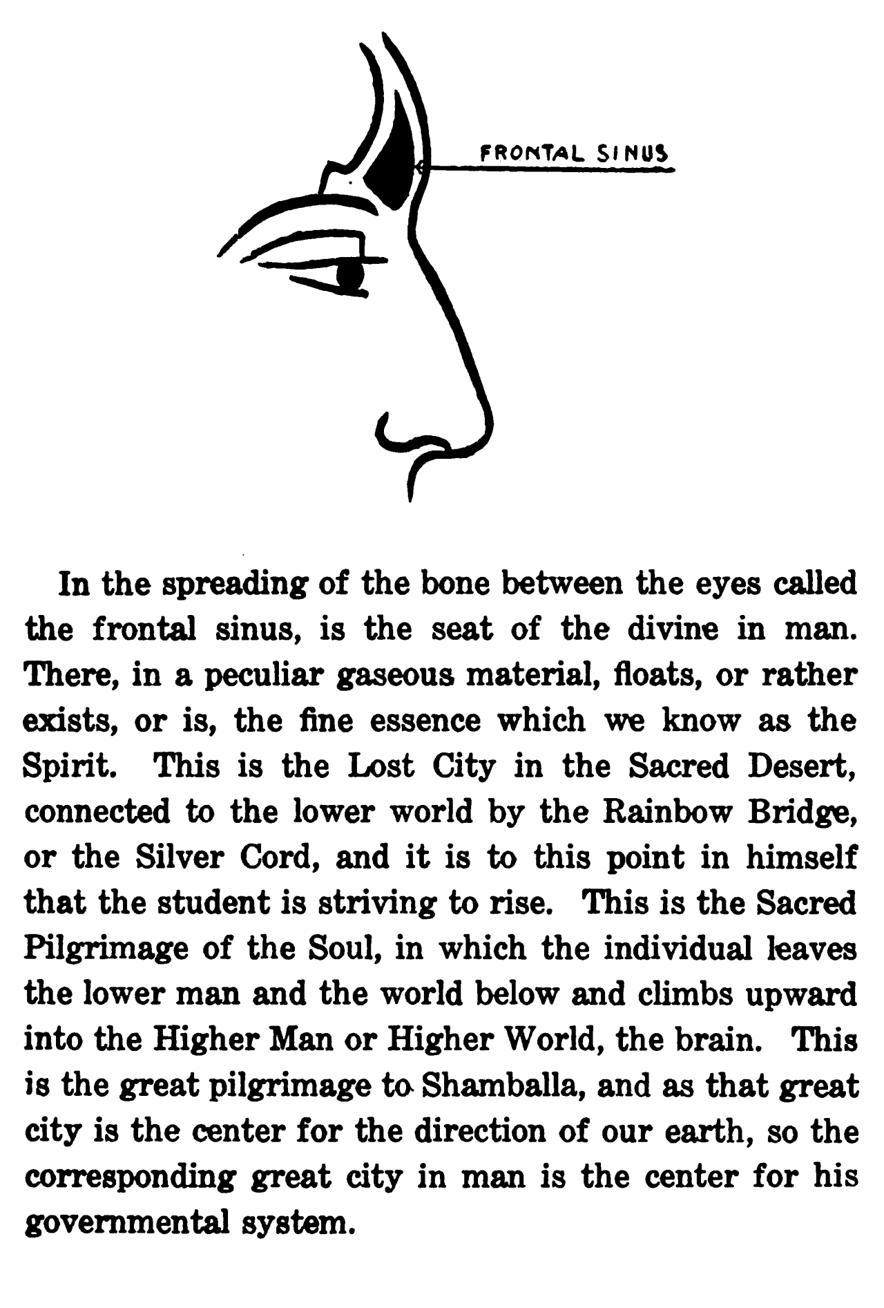 The Seat of the Divine Man | Gnostic Warrior