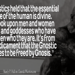 The Gnostic aspires to be freed by Gnosis