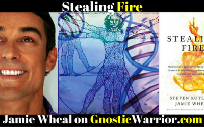 Jamie Wheal: Finding the Flow State & Stealing Fire