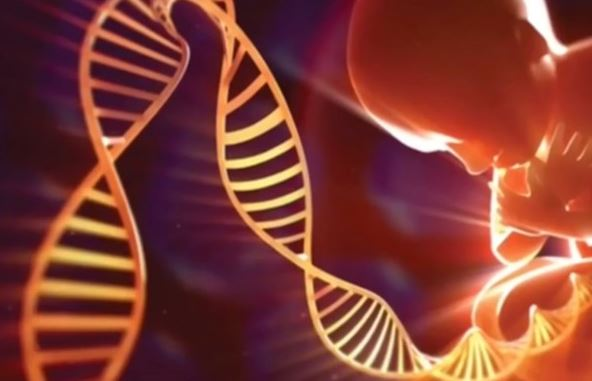 Not Your Mother's Genes: Mitochondrial DNA Can Come from Your Father