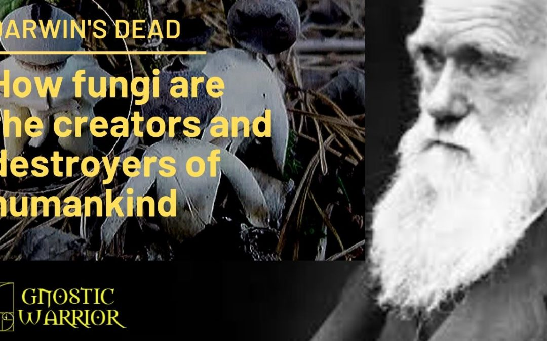 Darwin's Dead: How fungi are the evolutionary creators and destroyers of humankind