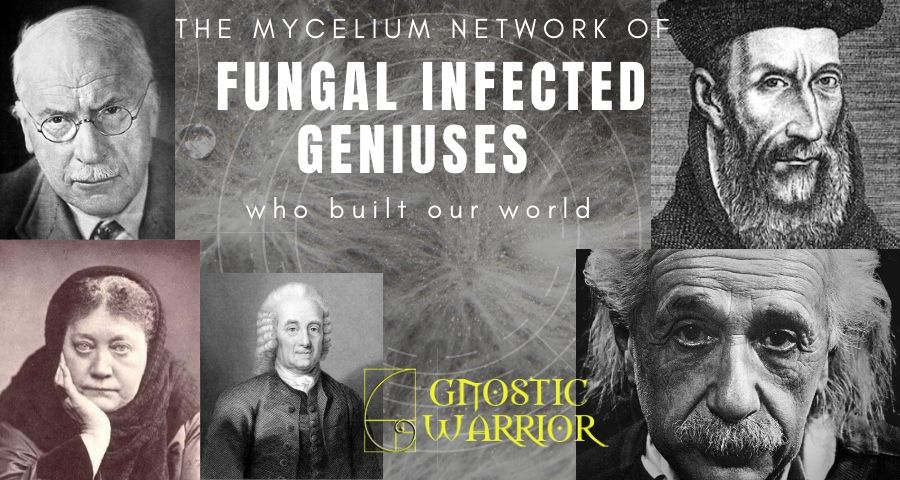 The mycelium network of fungal infected Geniuses who built our world