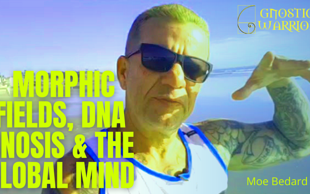 Morphic Fields, DNA Gnosis & the Global Mind