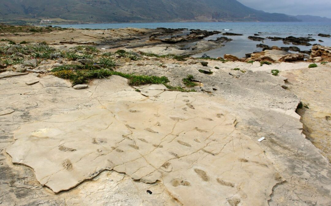 Earliest Footprints of Humanoid Discovered on the Island of Crete