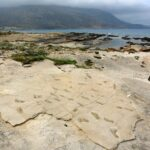 Earliest Footprints of Humanoids Discovered on the Island of Crete