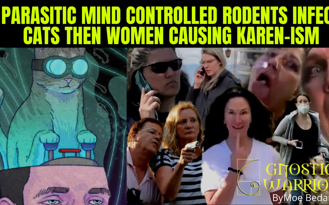 Parasitic Mind Controlled Rodents Infect Cats Then Women Causing Karen-ism