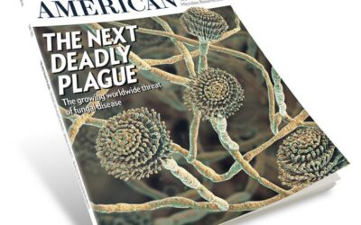 The Next Plague: Doctors warn toxic molds/fungi more deadly than COVID-19