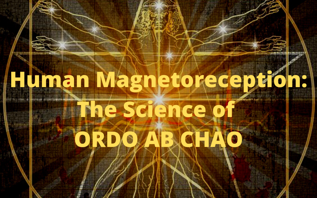 Human Magnetoreception: The Science of ORDO AB CHAO