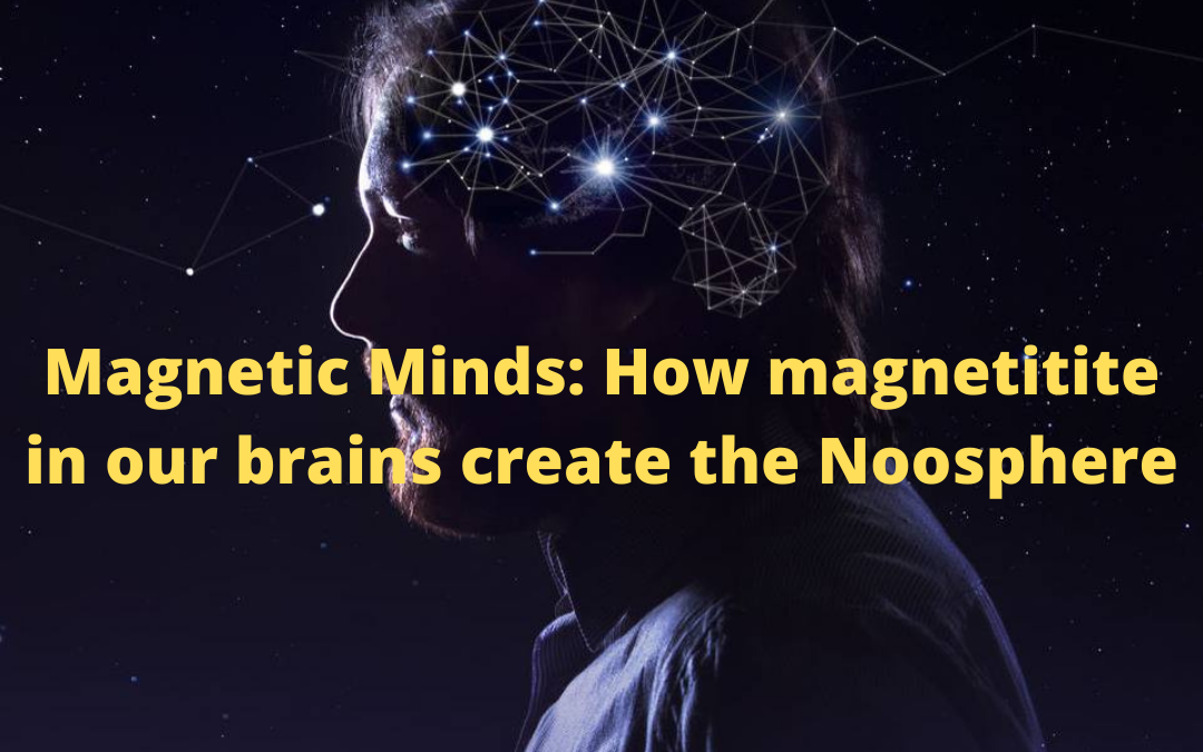 Magnetic Minds: How magnetite in our brains create the Noosphere